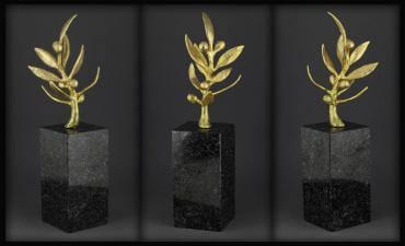 Olimpinės kartos apdovanojimai